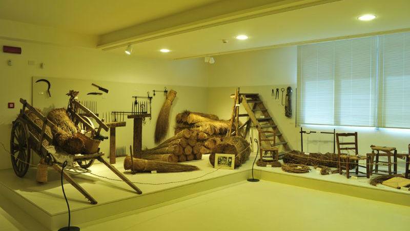 Ecomuseo delle Erbe Palustri